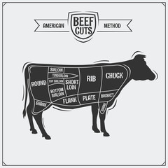 American cuts of beef. Vector illustration.