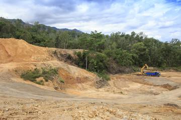 Deforestation: Excavators destroy rainforest to make way for oil palm plantations