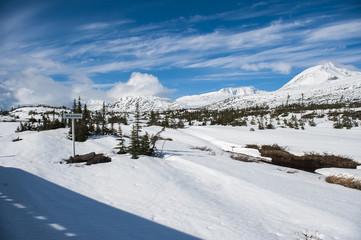 White Pass (Alaska)