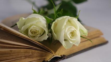 Weiße Rosen auf altem Buch