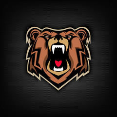 head of Angry bear on dark background. Sport team or club emblem