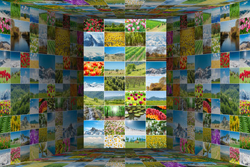Collage of many nature photos