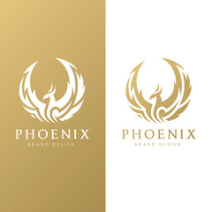 Phoenix logo,Eagle logo,Brand identity white bird and wing concept.