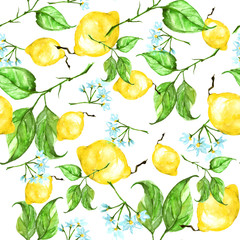 Vintage watercolor pattern - Lemon branch with flowers and leaves. 