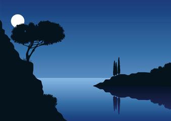 Landschaft mit Vollmond an einer felsigen Küste