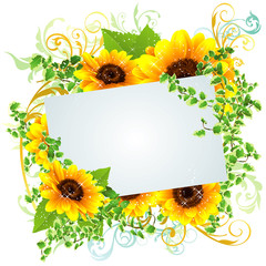 向日葵の夏らしい綺麗なフレーム