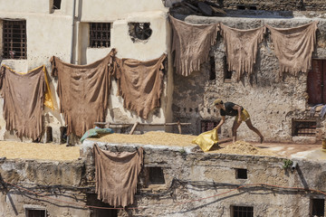 Workers at the Chouwara tannery in Fez, Morocco.