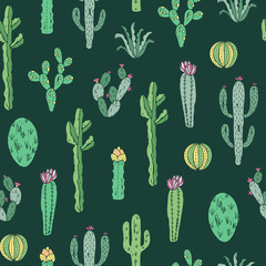 Cactus seamless pattern. Vector background with cactus and succulents