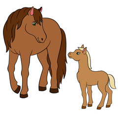 Cartoon farm animals. Mother horse with foal.