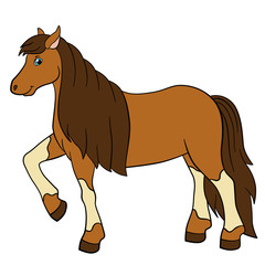 Garden Poster Pony Cartoon farm animals. Cute horse.