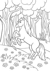 Coloring pages. Farm animals. Beautiful horse.