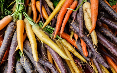 Colorful organic carrots at a local farmers market