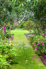 Beautiful summer garden with green lawn and various flowers
