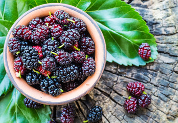 Fresh mulberries in a bowl on a garden background