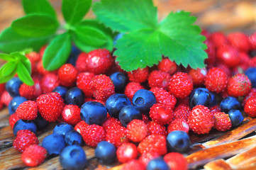 Wild strawberries and blueberries, wattled background
