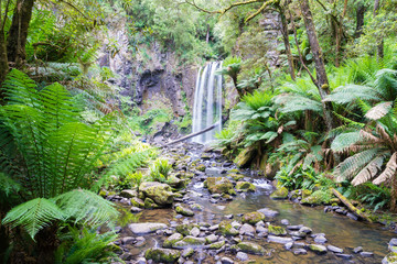 Waterfall in the Great Otway National Park in Victoria, Australia