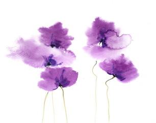 Purple Poppy flowers, watercolor painting