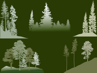 set of green pine and fir trees on dark background