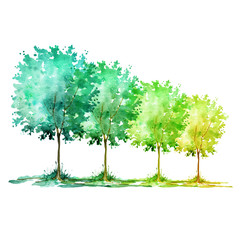 Watercolor. Group of trees on a white background. The color change from bright green to yellow