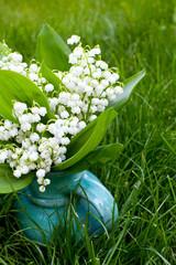 lilly of the valley on the grass