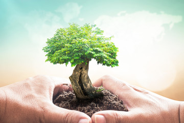 World environment day concept: Human hands holding big tree over blurred world map of clouds background.
