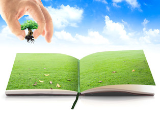 World environment day concept: Human hand add growing tree into opening book in meadow over beautiful blue sky background
