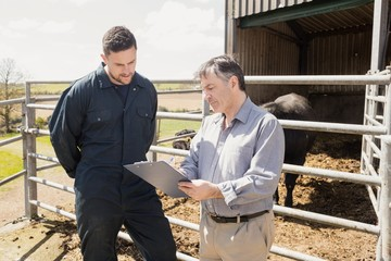 Vet and farm worker discussing over clipboard