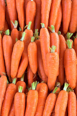 Organic Carrot. Food background. Close up, Top view, High resolution product.