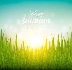 Beautiful summer background with grass and sun. Vector.