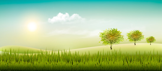 Beautiful summer countryside landscape background. Vector.