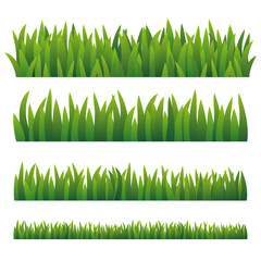 Green Grass, Isolated On White Background