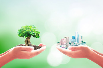 World soil day concept: Two entrepreneur hands holding heart shape of big tree and city over blurred green nature background