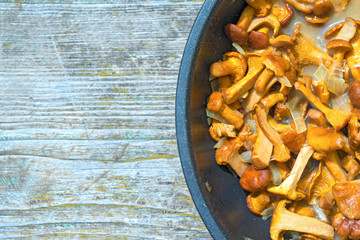 chantarelle mushrooms on a frying pan with copy space on a wooden background