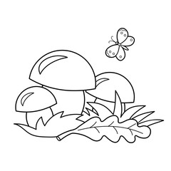 Coloring Page Outline Of cartoon mushrooms. Summer gifts of nature. Coloring book for kids