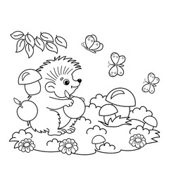 Coloring Page Outline Of cartoon hedgehog with apples and mushrooms in the meadow with butterflies. Coloring book for kids