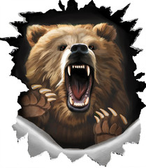 Angry shout bear on white background. Beast claws tearing metal