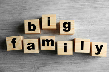 Words BIG FAMILY on light background