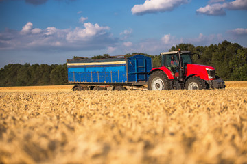 Wall Mural - Red tractor with blue trailer ina field