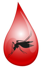 Mosquito in drop of blood