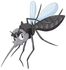 Wild mosquito in black color