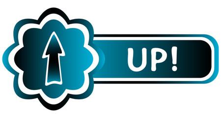 Double blue icon arrow up