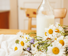 Simply stylish wooden kitchen with bottle of milk and glass on table, summer flowers camomile, healthy food moring concept