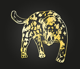 golden panther vector design