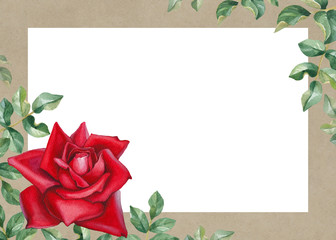 Watercolor illustration of a rose flower. Perfect for greetings
