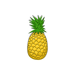 Pineapple Isolated on White Background, Tropical Fruit Ananas, Vector Illustration