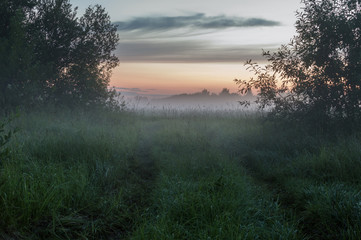 The evening, the setting sun illuminates the field with a road covered with mist