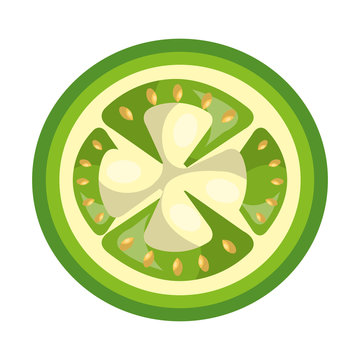 Fruit healthy food isolated flt icon, vector illustration graphic design.