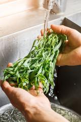 Man's hands washing estragon. Water flowing on green herb. Fresh herbs in restaurant kitchen. Small piece of nature.