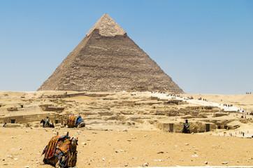 Pirámide de Kefrén con camellos, en El Cairo, Egipto