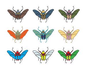vector color beetle